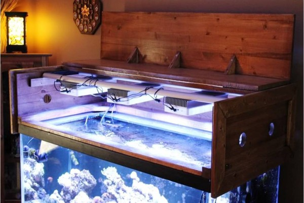Some Basic Guidlines for LED Lighting in Aquariums - Reef